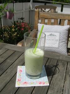 Sommer auf dem Balkon - Kiwi-Vanille-Smoothie - Greengate Kissen